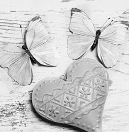 butterflies-and-heart